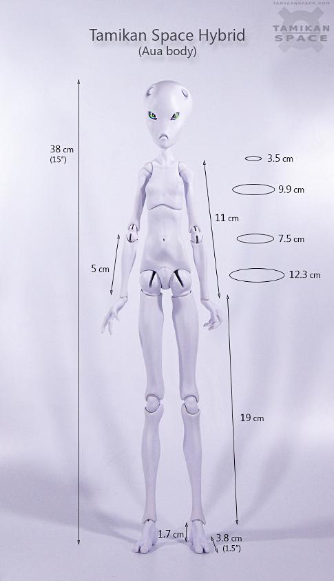 Tamikan Space Hybrid measures