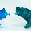 WaveMe and Stormy Tamikan Space Pet Tardigrades